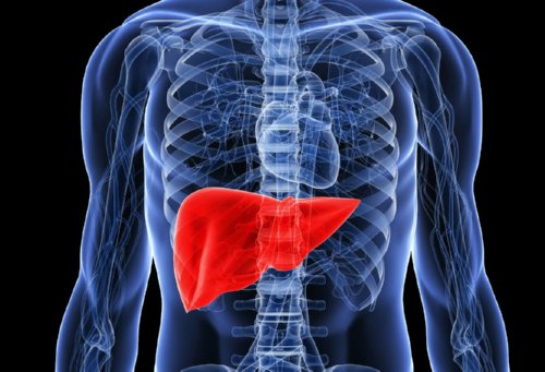 liver-detoxification