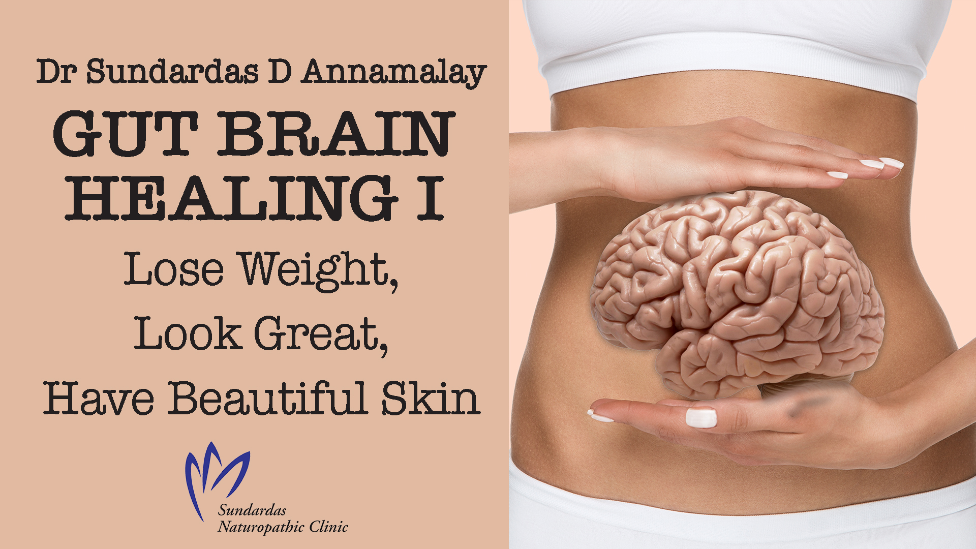 gut brain healing series